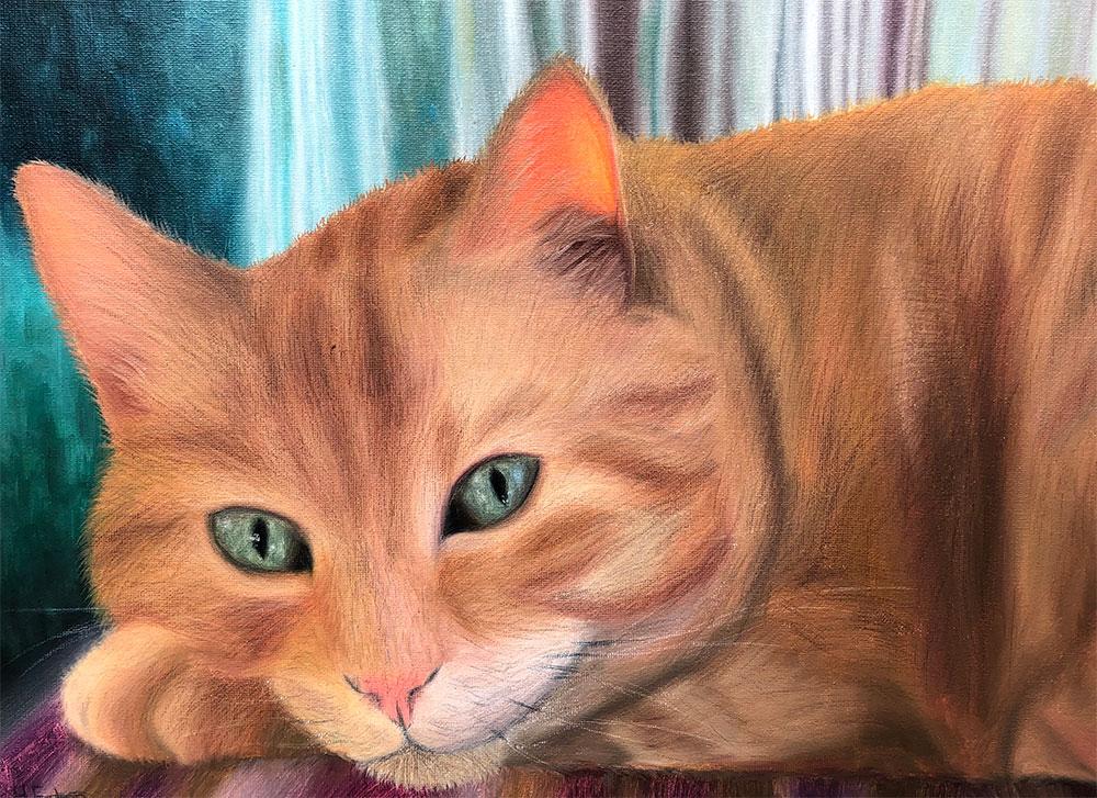 Skippy Cat